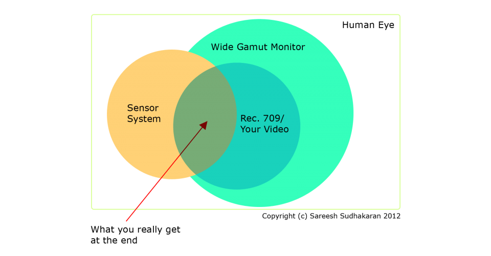 Comprehensive Guide to Rigging Any Camera – 10 External Monitoring (Part 7)