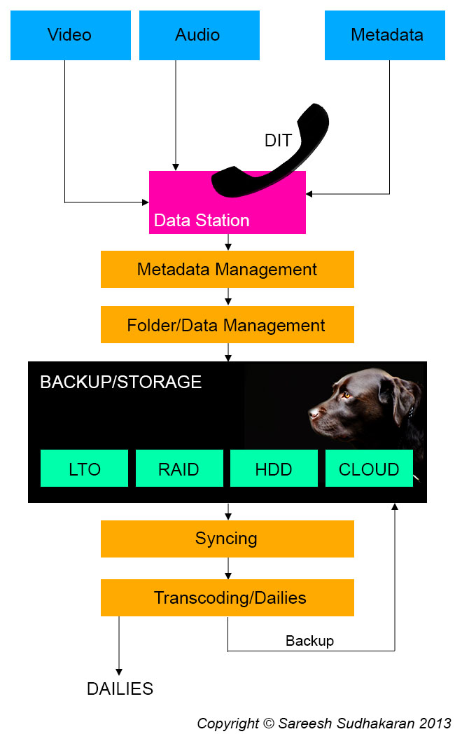Data Management Workflow
