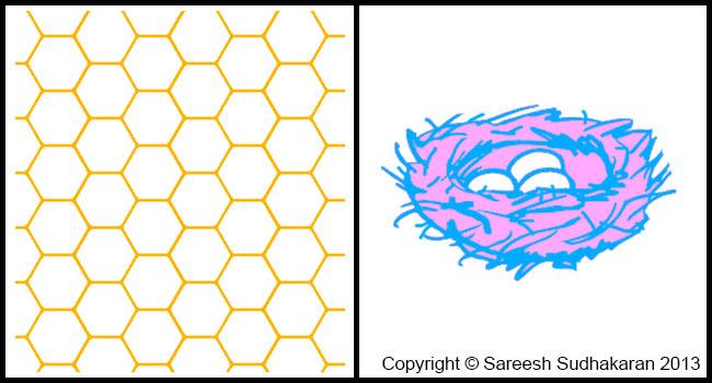 Beehive vs Nest