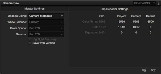 CinemaDNG Codec Settings