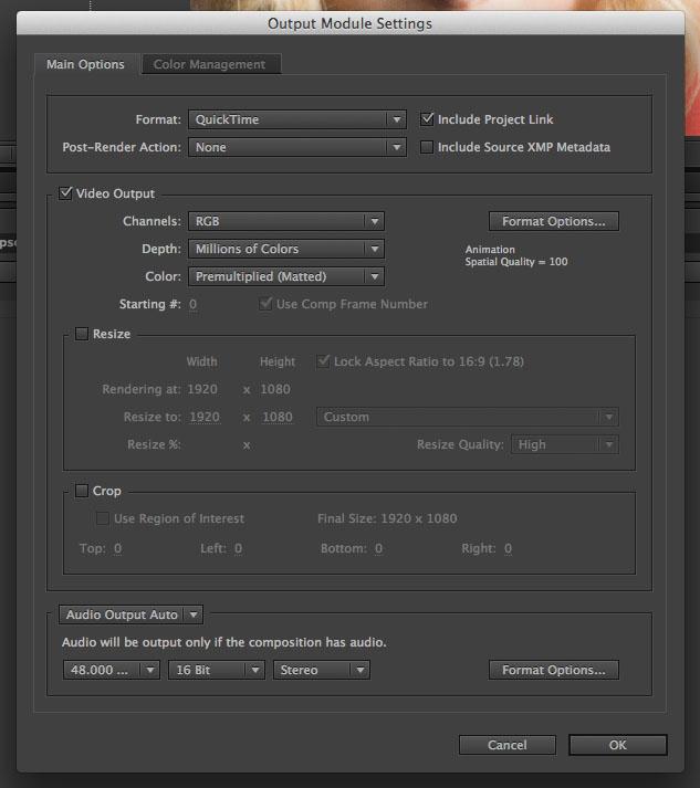 AE Output Module Settings