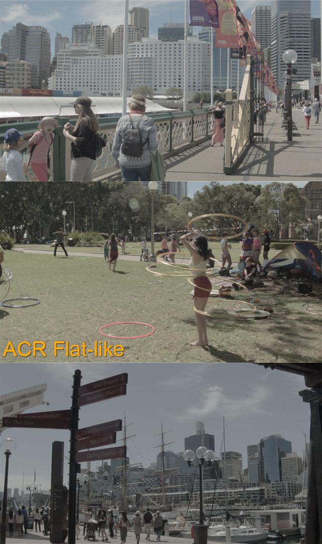 ACR Flat like all three
