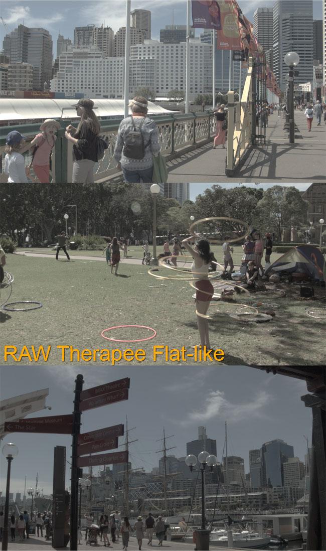 RAW Therapee Flat like all three