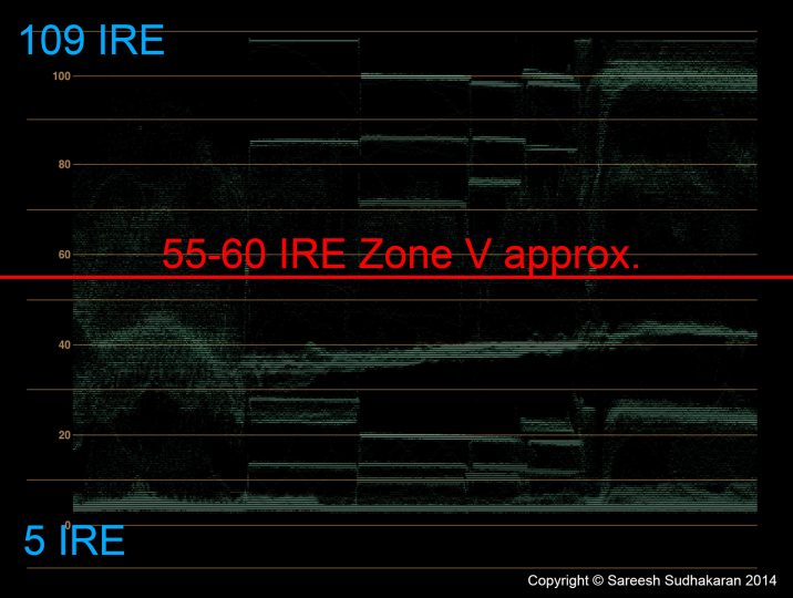 Zone V for Sony A7s S-Log2