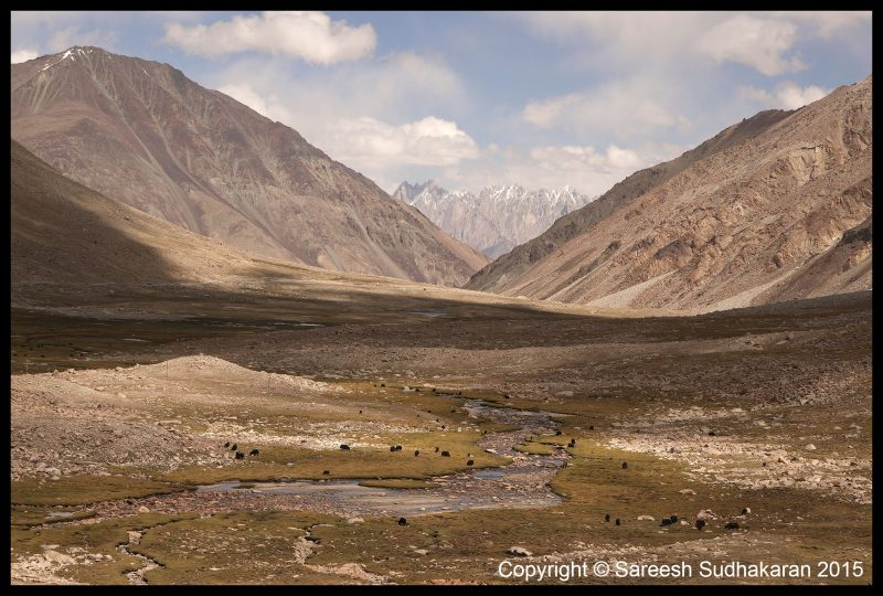 Case Study: Three Videos from Ladakh 2015