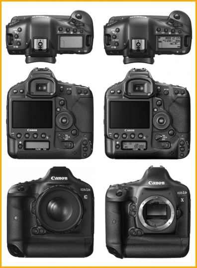 Canon 1DC vs 1DX