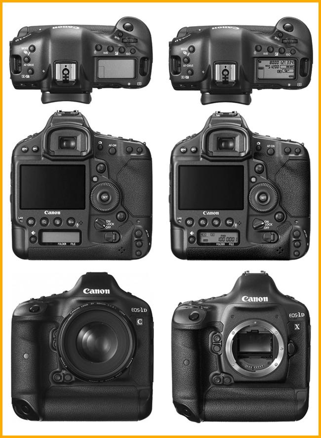 Canon 1DC vs 1DX Body Comparison