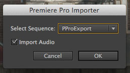 AE PPro Import