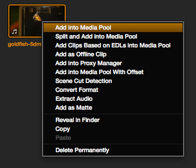 Resolve Import Clips into Media Pool
