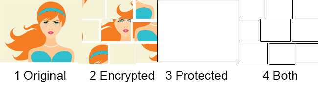 Encryption and Protection