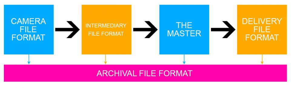 File Format Workflow Path