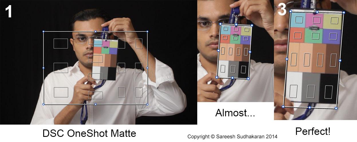 DSC Labs OneShot Matte
