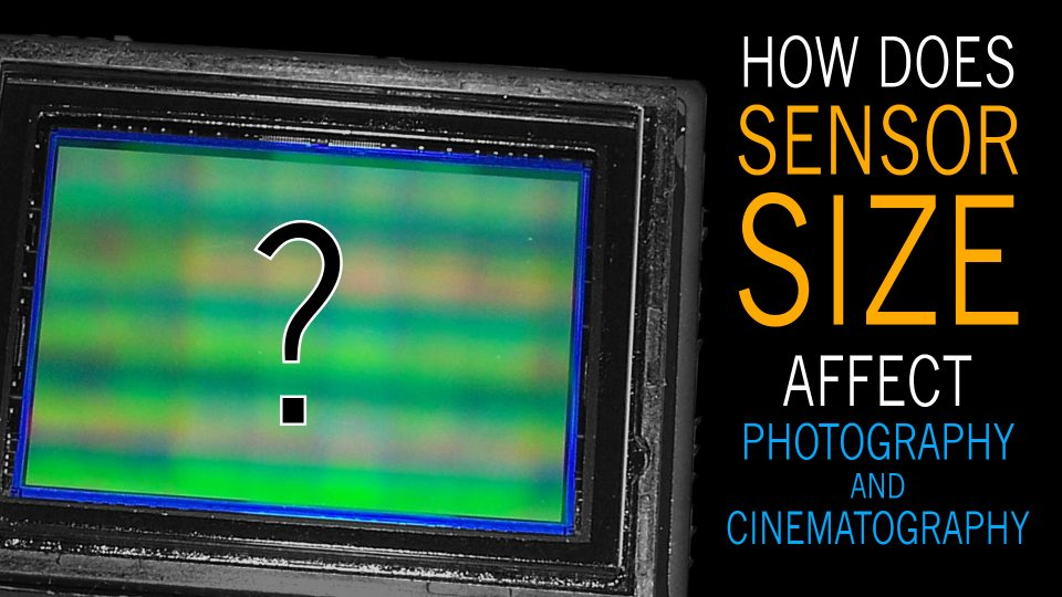 How does Camera Sensor Size Impact Photography and Cinematography?